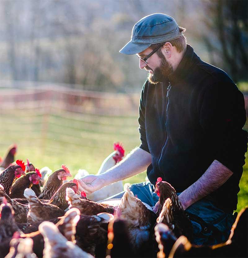 Dr Bassecour Conseil vétérinaire aux petits producteurs de volaille